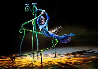 Le Cirque Du Soleil «Ovo»