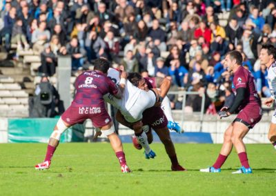 Rugby UBB-Toulon